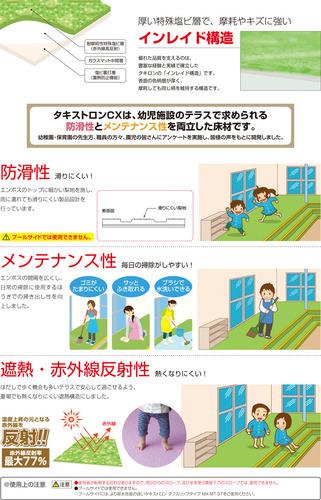 タキストロン 幼稚園 説明.jpg